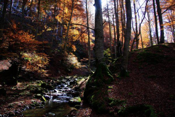 """Luz y color de """"El Rajao"""" en otoño"""
