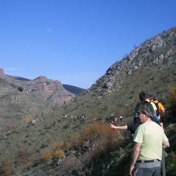 La ladera de Peñalba camino de vuelta a Tobía.