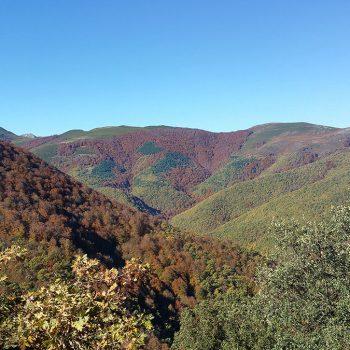 Vistas sobre el valle del río Tobía.