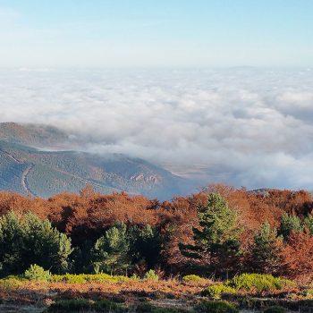 Sol en la majada y mar de nubes en el valle.