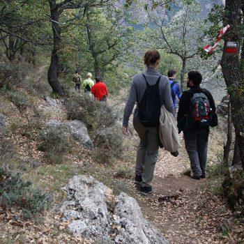 """Tras atravesar """"La Dehesa"""" iniciamos el descenso por la GR."""